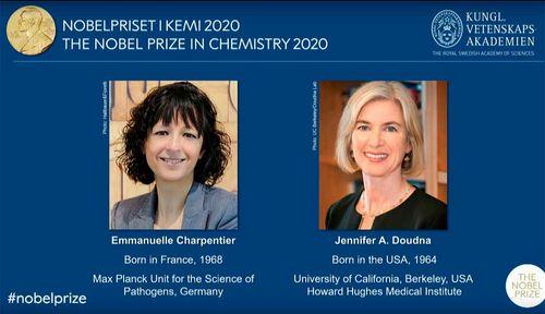 Chemie Nobelpreis